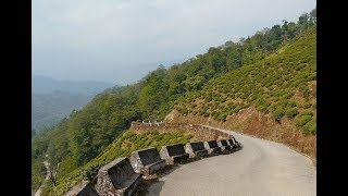 NJP Siliguri to Darjeeling by Car via Rohini Road - Part 1