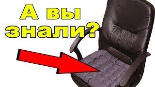 Сидушка на стул | Чтобы попа не болела не завяли огурцы