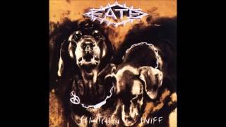 Fate - Scratch