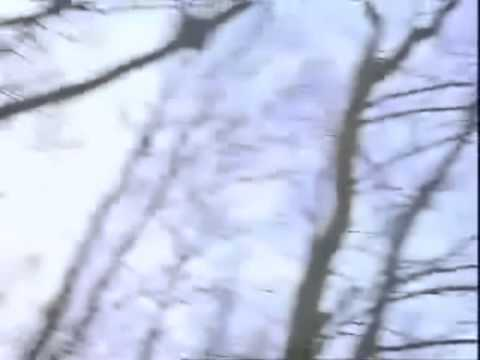 Current 93 - She Took Us To The Places Where The Sun Sets
