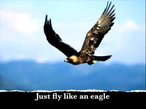 Image result for i want to fly like an eagle