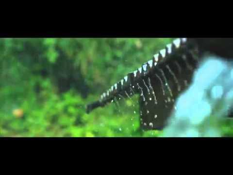 Maheshinte prathikaram song