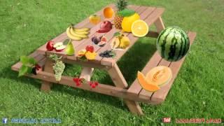 ხილი და ბოსტნეული, სასწავლო ვიდეო ბავშვებისთვის, Xili Da Bostneuli, Sascavlo Video Bavshvebistvis