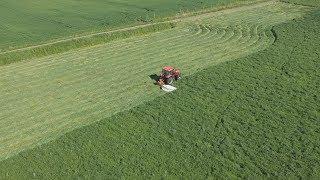 Koszenie łąk na 2 kosiarki TYM T1003 TYM T1054