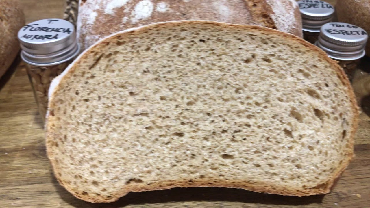 Miga de los panes de Ecomonegros