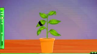 To Demonstrate that light is necessary for photosynthesis e learning science