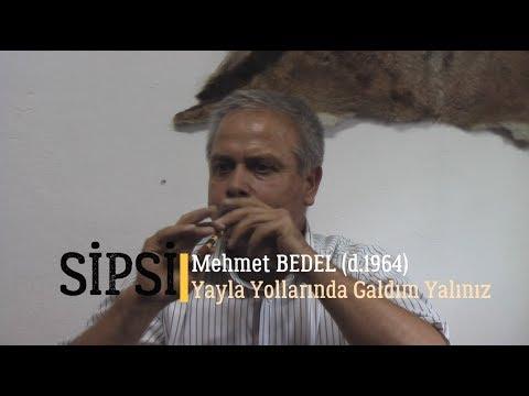 Mehmet Bedel