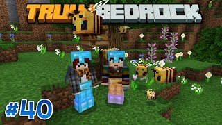 Truly Bedrock - This Will Bee An Adventure! - Ep 40