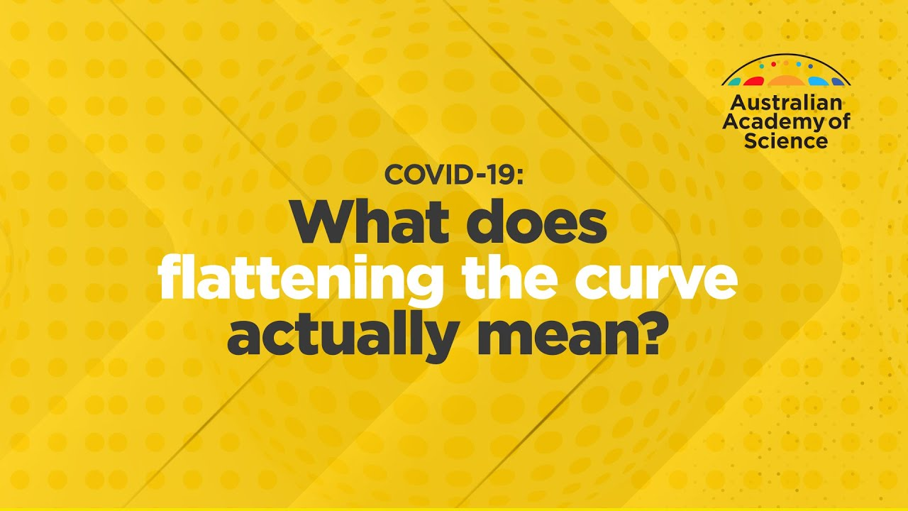 COVID-19: The facts - Curious