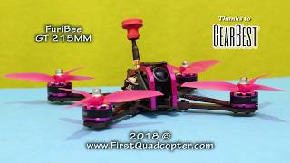 FuriBee GT 215MM review (Unboxing and Test flight)