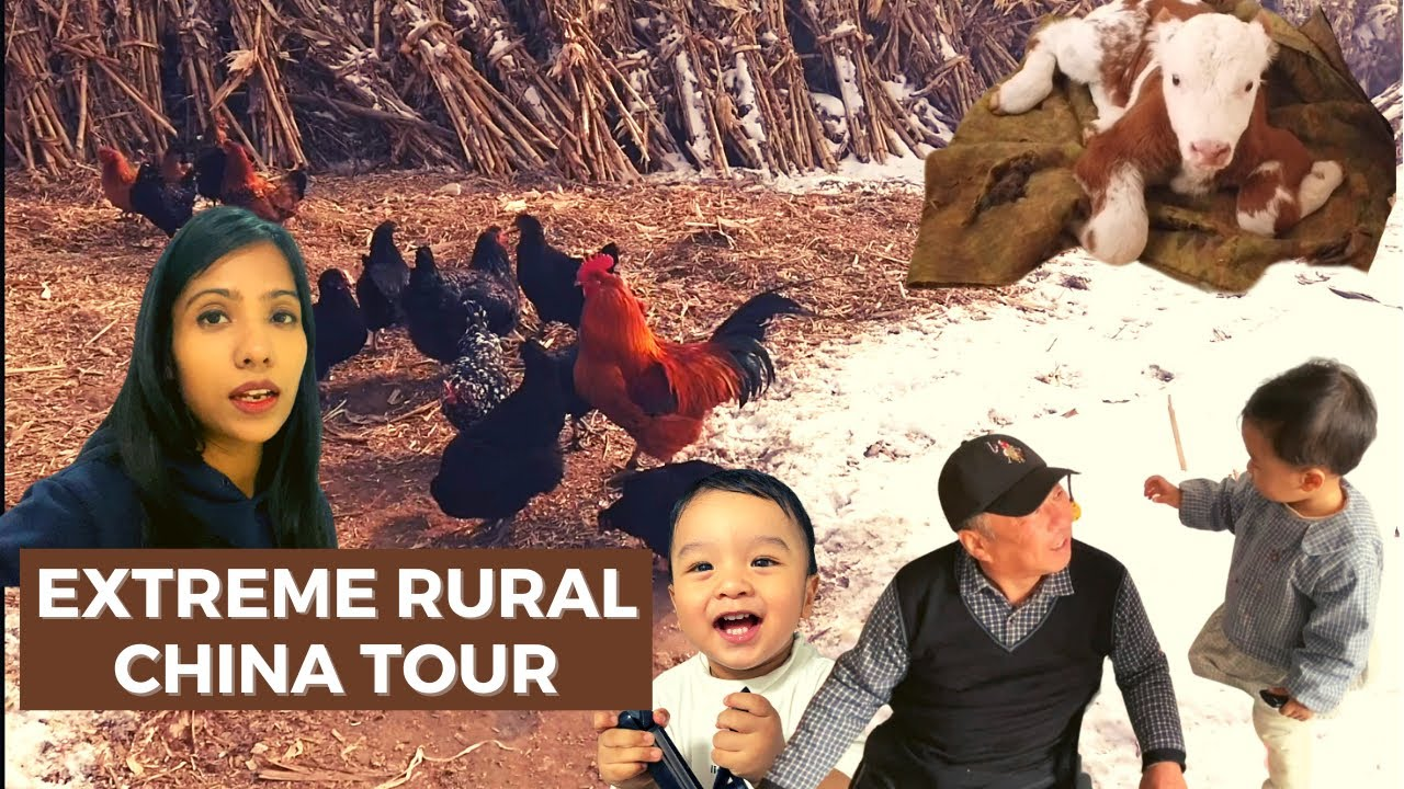 Extreme rural China tour | Farmhouse of relatives | Indian in China