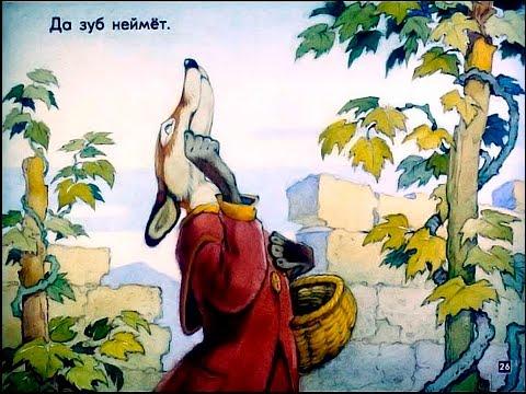 Мультфильм лиса и виноград смотреть