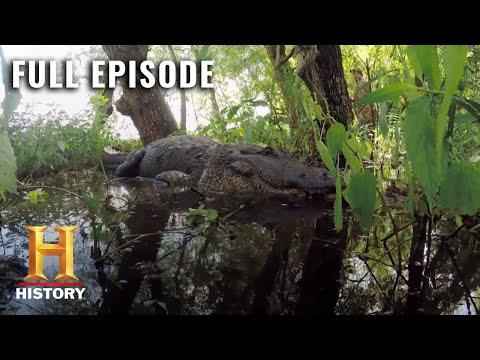 Swamp People: Full Episode - Fresh Blood (Season 8, Episode 2) | History