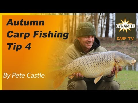 Carp Fishing and Catfishing Holiday in France - Beausoleil