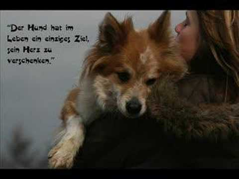 Mein Hund Betty