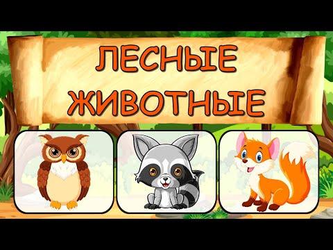 Развивающие МУЛЬТИКИ про животных - Лесные животные Развивающие игры для малышей