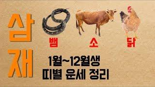 2019년 삼재! 뱀띠 소띠 닭띠중 복삼재, 악삼재는 몇 월생? [천안 유명 무당]