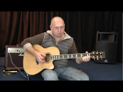 Bip Bop - Paul McCartney. Исполняет Сергей Антипов. Guitar College Moscow
