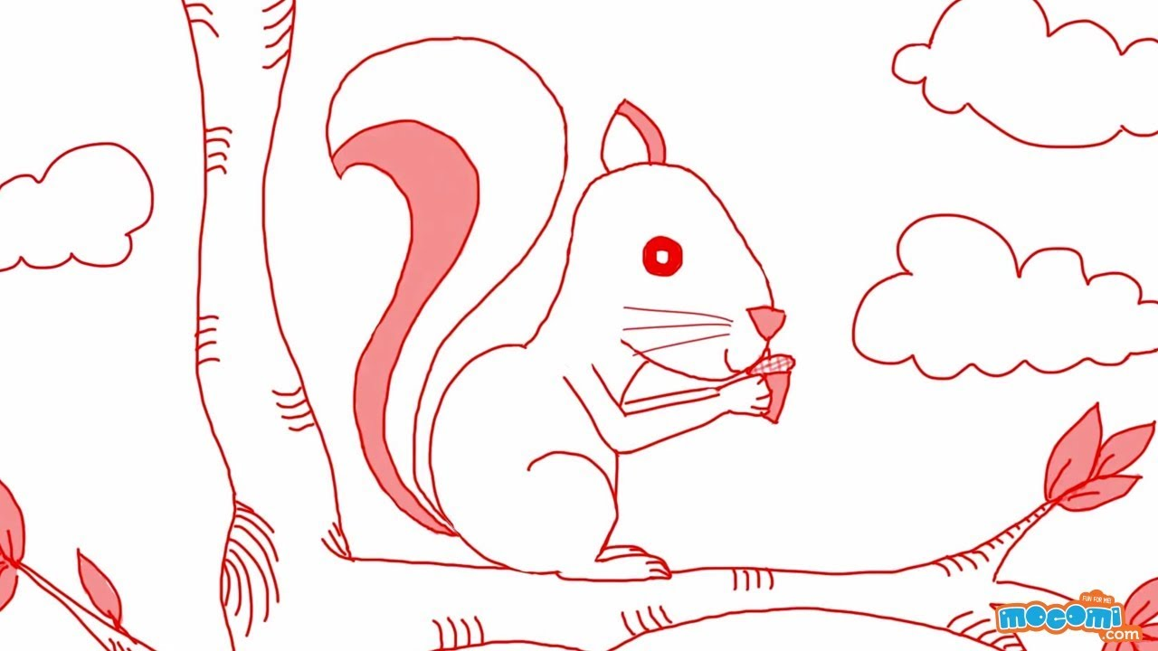 how to draw a squirrel step by step drawing for kids educational