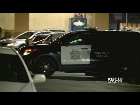 Milpitas Police Warn Of Spike In Car Break-Ins At Area Shopping Centers