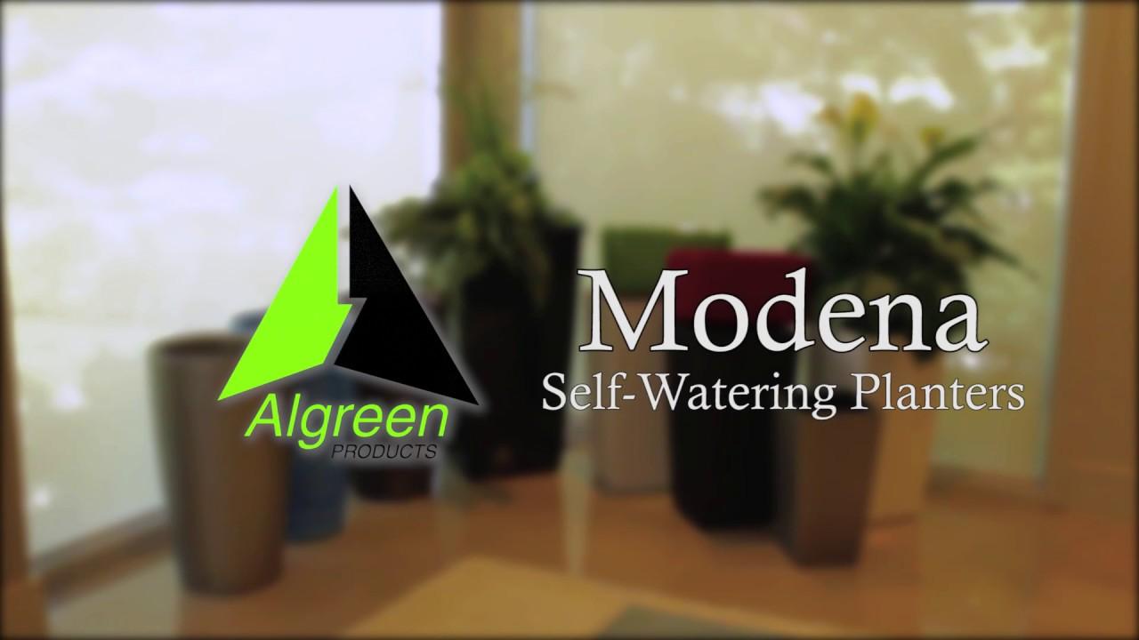 algreen modena self watering planters youtube