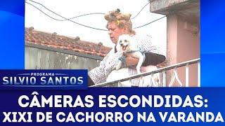 Xixi de Cachorro na Varanda | Câmeras Escondidas (18/03/18)