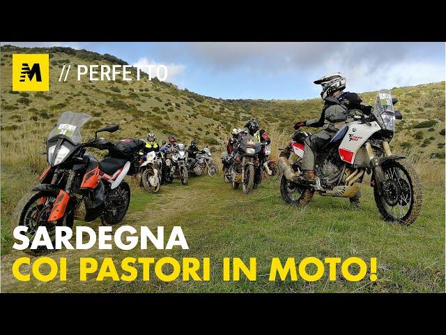 In Sardegna coi Pastori in Moto: siamo stati al Raid degli oliveti!