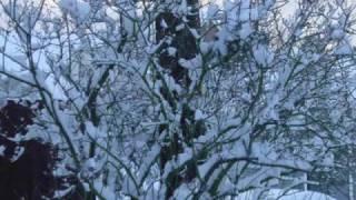 Francis Lai & Danielle Licari - Snow frolic