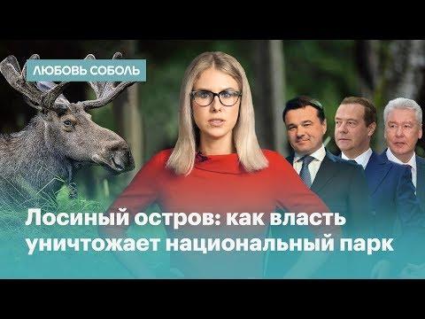 Медведев, Воробьев, Ротенберг