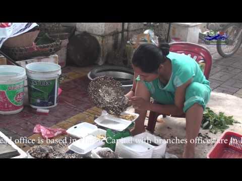 Xanh Market - Cao Bang Town Vietnam - Vietnam Local Market