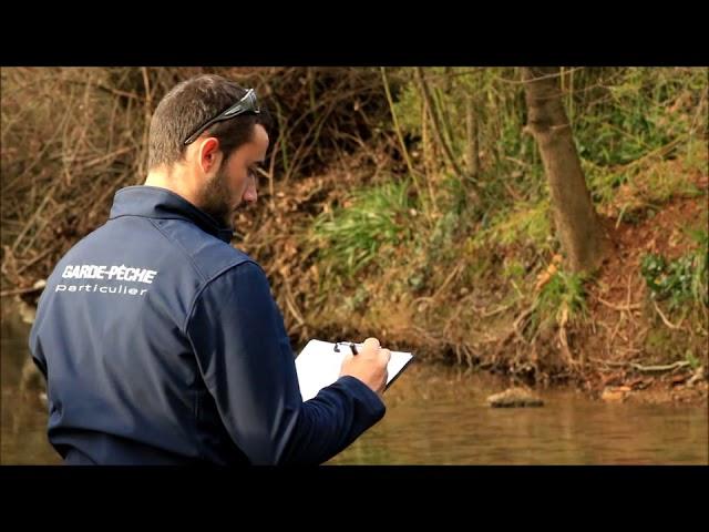 Reproduction de la truite Fario dans le Var 2016