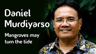 Daniel Murdiyarso - Mangroves may turn the tide