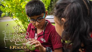 Kohollawe Dewathavi | Episode 03 - (2021-02-11) | ITN Thumbnail