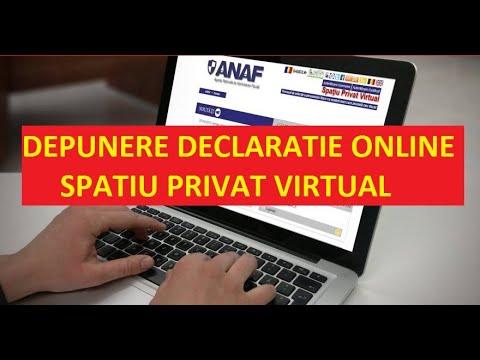 venituri online venituri reale)