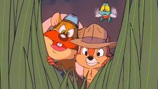 Чип и Дейл спешат на помощь - Серия 13, Большое приключение киви | Мультфильмы Disney