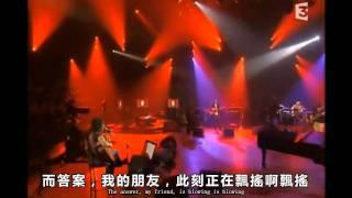 風中搖曳(中文字幕)(Blowing in the wind)