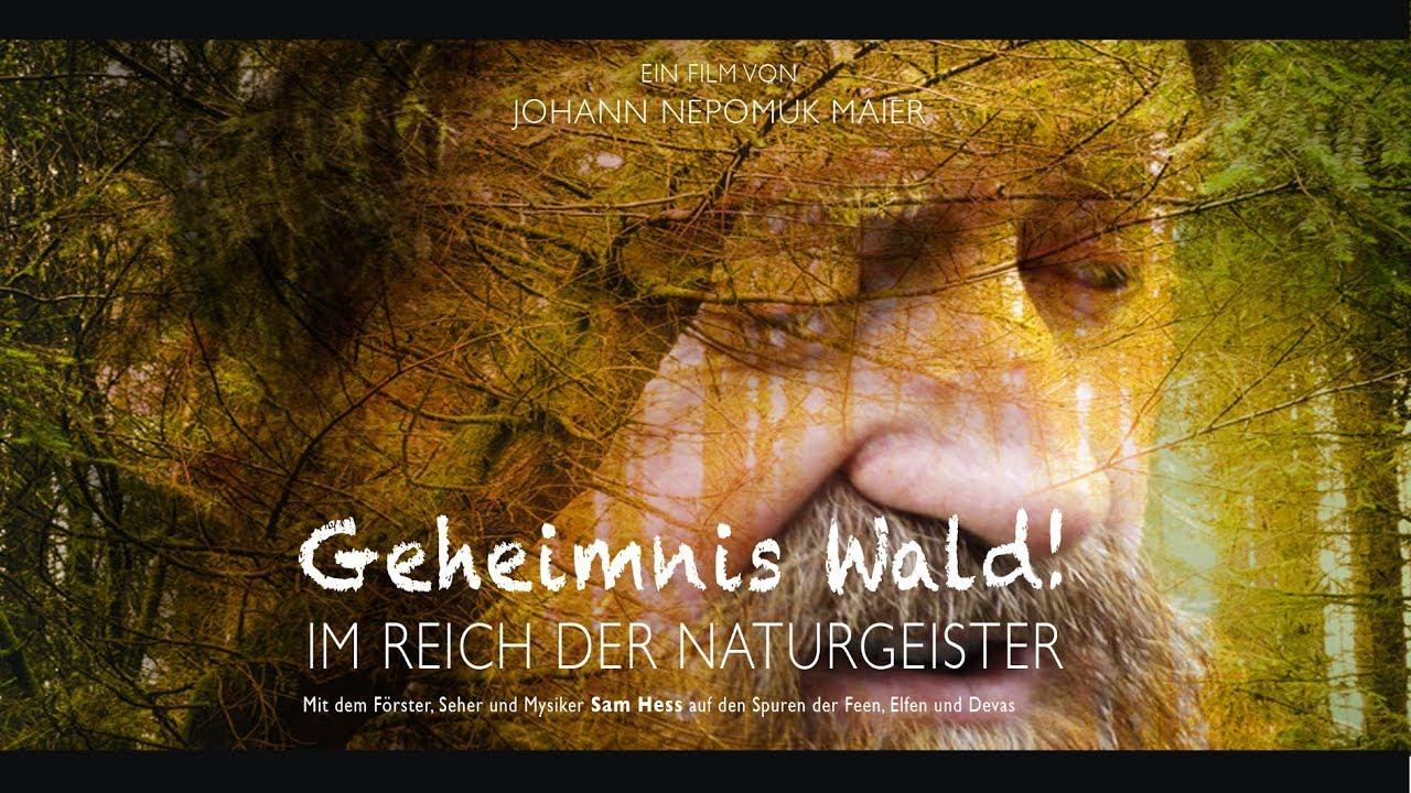 Trailer: Geheimnis Wald - Im Reich der Naturgeister