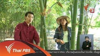ตะลุยทั่วไทย : ไผ่กิมซุง (20 ก.พ. 61)