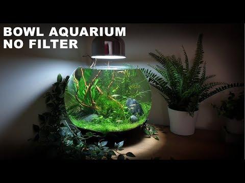 How To Make A No Filter 3 Gallon Fish Bowl Aquarium  (No Filter No Ferts No Co2 No Heater Aquascape)