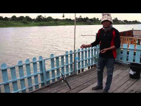 สอนตกปลา - ตอนการผูกเบ็ด เกี่ยวเหยื่อ ใช้งานร่วมกับหัวเชื้อตกปลาโต้งกะลา