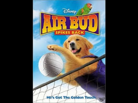 Movie Review: Air Bud Spikes Back - YouTube