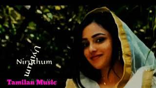 Best love WhatsApp status video song | new Tamil movie video song | Tamilan music