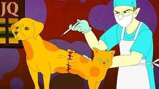 Как стали домашними кошки и собаки? Собака  и Кошка самые лучшие друзья человека. Как так получилось