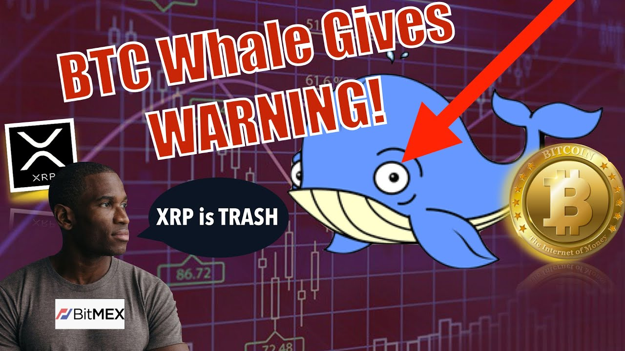 🔴20M BTC Whale Issues WARNING To ENTIRE MARKET! Bitmex CEO Calls XRP DOG💩and XRP ► BTC FLIPPENING! 5