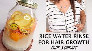 Rice Water Rinse for Hair Growth PART 3 Real Update! | BiancaReneeToday