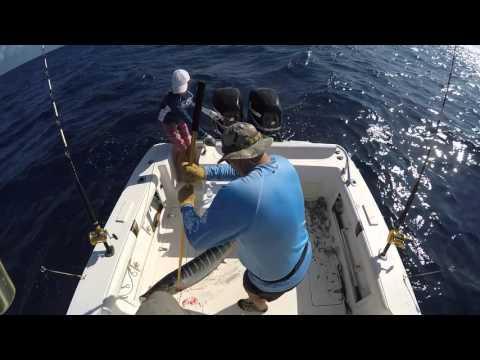 Fishing Wahoo Off Coast Of Aruba