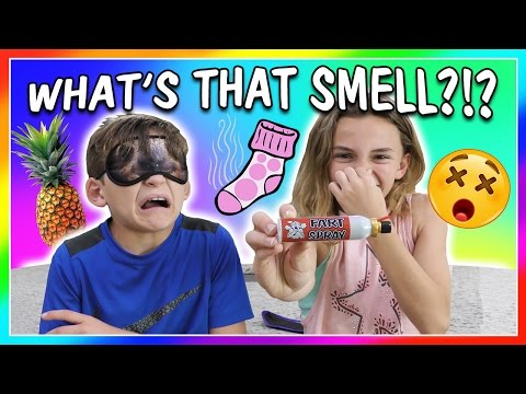 WHAT'S THAT SMELL CHALLENGE | We Are The Davises