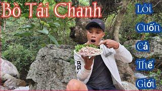 Cách Làm Món Bò Tái Chanh  - Lôi Cuống Cả Thế giới  [ Nam Vlog ]