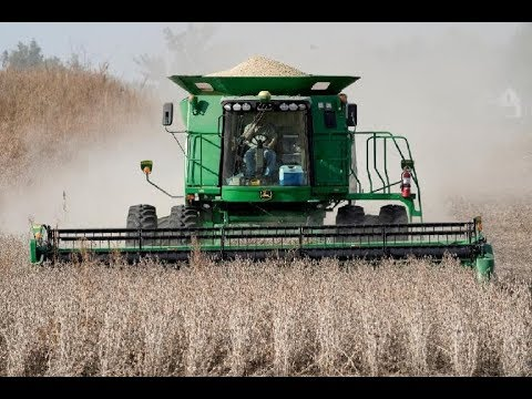 us-net-farm-income-increased-in-2019-to-highest-levels-in-6-yrs,-but-distortions-hurt-many-farmers