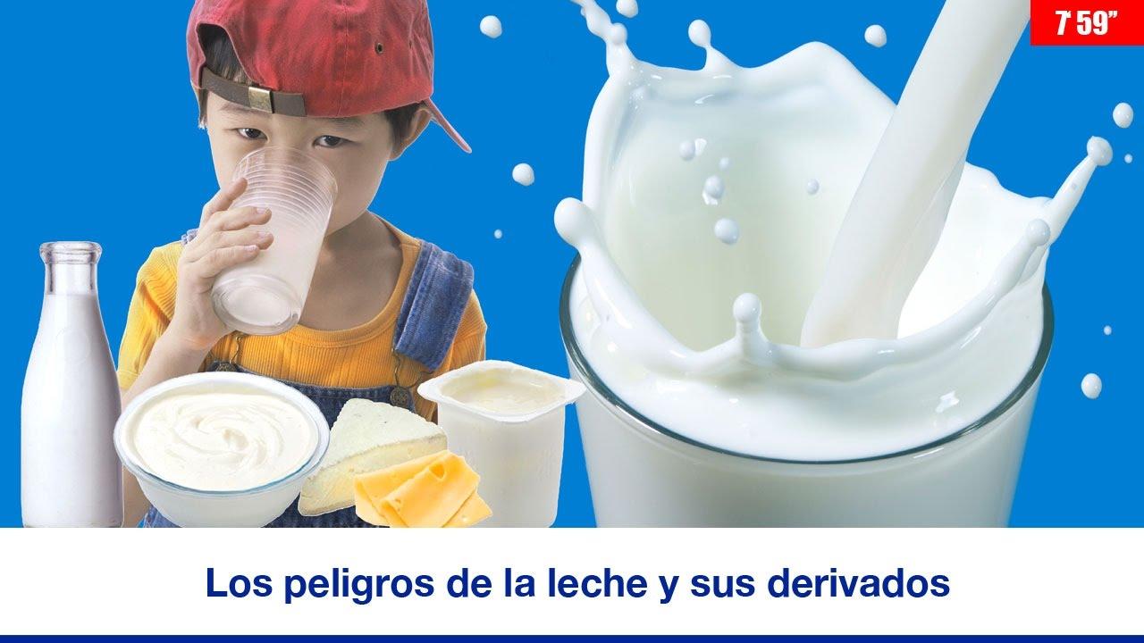 los peligros de la leche y sus derivados 7 59 youtube